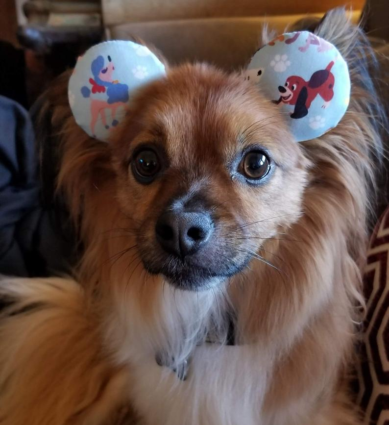 Disney Dog Mickey Mouse Ears